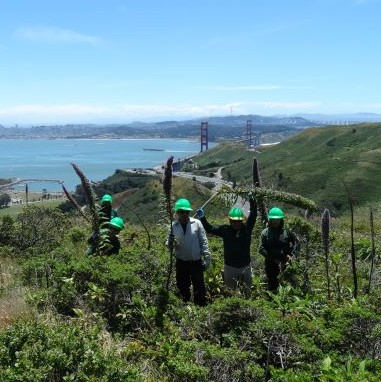 Conservation Corps North Bay - Become a Corpsmember
