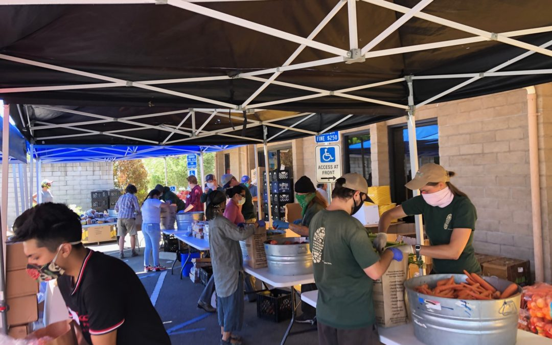 June 2020 Project Spotlight: Food Banks