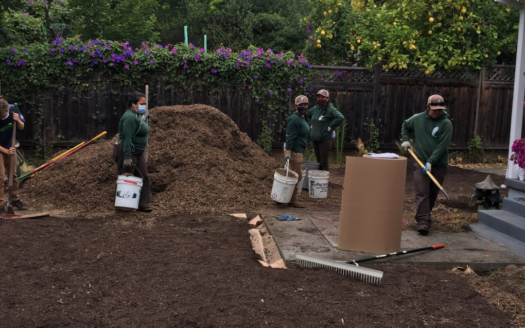 September 2021 Project Spotlight: Mulch Madness with Marin Water